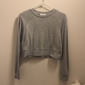 🌪grey f21 sweatshirt crop top🌪